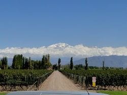 Mendoza Journeys