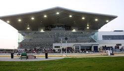 ‪Limerick Greyhound Stadium‬