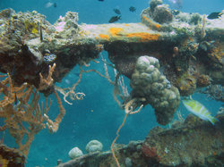 Sunken Japanese Wrecks