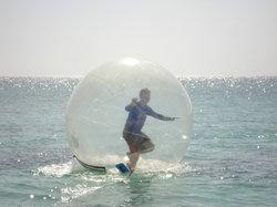 Wowballs Caribbean