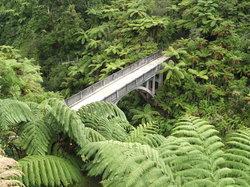 Spirit of the River Jet - Whanganui River