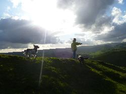 Top of High Wheeldon