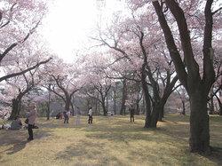 Kasuga Park