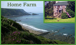 Home Farm B&B