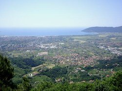 Focacceria Santa Lucia