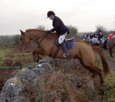 Flowerhill Equestrian Centre