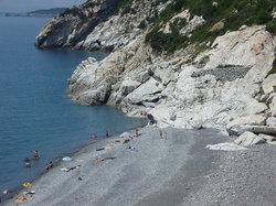 Spiaggia di Palombaia (31257902)