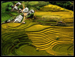 Impressive Travel Vietnam - Day Tours