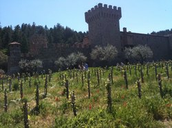 Reserve Wine Tours - Private Tours