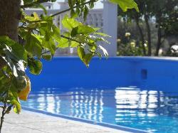 anthis pool