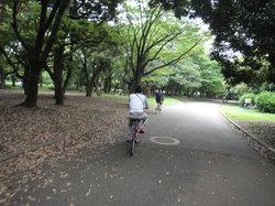 東京バイスクルツアー