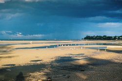 Shorncliffe Beach