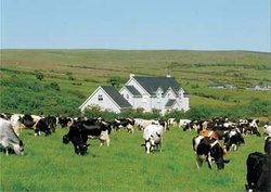 Keeragh Lodge Bed & Breakfast