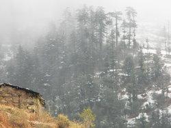 Himalayan Paradise Hotel