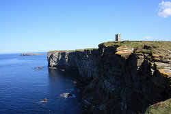 Marwick Head RSPB Nature Reserve