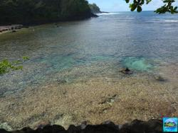 gorgeous coves for safe snorkeling