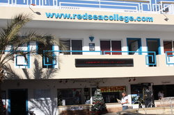 Red Sea Diving College
