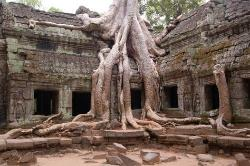 Angkor Wat Driver Private Tours