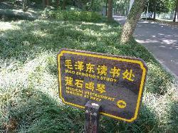 Mao's Study Sign