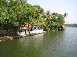 Backwaters (31936783)