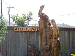 Mosquito Cafe