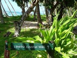 Lavena Coastal Walk