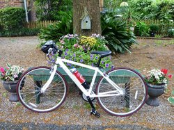 Charleston Bicycle Tours