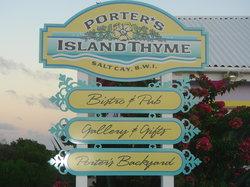 Porter's Island Thyme