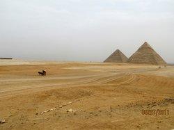 Egypt Travel Gate Day Tours