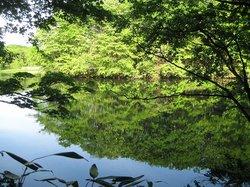Nishiki Onuma Park