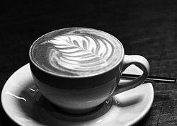 Lunar Cafe Knysna