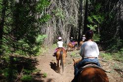 Yosemite Trails Horseback Adventures