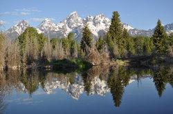 Teton Scenic Floats and Fly Fishing