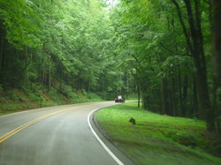 Newfound Gap Road