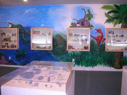 Box Elder Museum