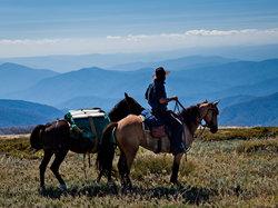 Bogong Horseback Adventures
