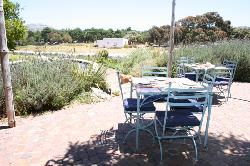 Cape Farmhouse Restaurant