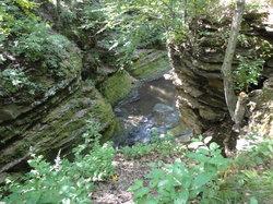 Pewit's Nest Gorge