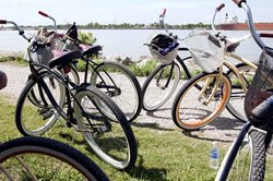 Ninth Ward Rebirth Bike Tours