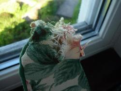 alza paños ventana roto