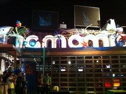 Mamamia Disco