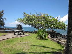 ココナッツ島
