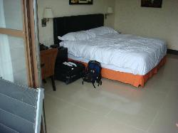 Big room with king size bed, 2 desk chairs, flat screen tv, refrigerator, balcony