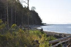 Parc provincial de Rathtrevor Beach