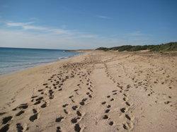 Spiaggia Salina dei Monaci