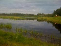 Wander Lake at Wildlife Sanctuary
