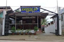 Amphibi