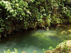 Toro Negro Reserve