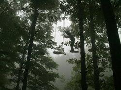 Rampy Park - Parco Acrobatico Forestale