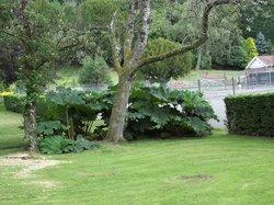 Cwmdonkin Park